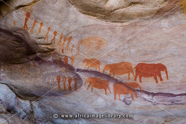 Elephant rock-art paintings, Cederberg Wilderness, South Africa