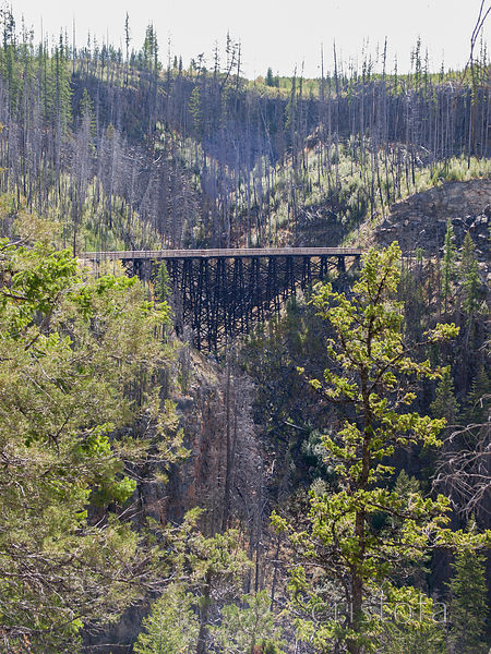 Myra Canyon Kettle Valley Railway trestles