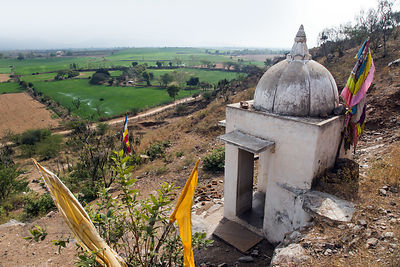 Temple overlooking wheat fields near Nand village, Rajasthan, India