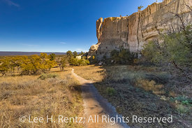 Along the Headland Trail in El Morro National Monument