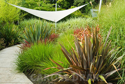 Contemporary grass garden designed by John Makepeace incorporates curving stone path through beds planted with Imperata cylin...
