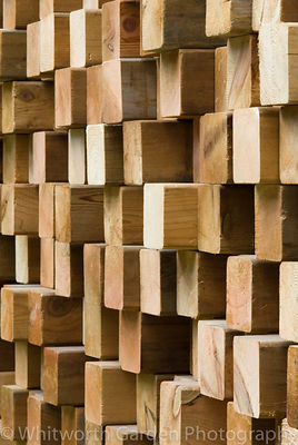 A wall created from irregular wooden blocks. © Rob Whitworth