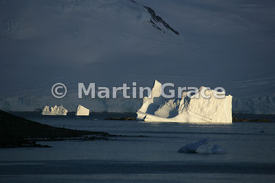 Icebergs lit spectacularly by evening sun, Marguerite Bay, Antarctic Peninsula