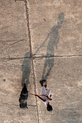 Shadow of a boy walking a dog in Antop Hill, Mumbai, India.
