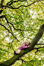 Younger Nordic girl in a tree 3