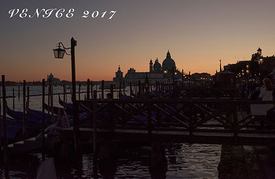 Greg & Mandy Venice Wedding 2017  photos