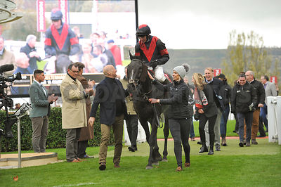 Relentless_Dreamer_winners_enclosure_27102018