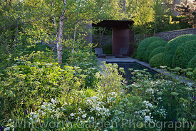 The Laurent-Perrier Garden at RHS Chelsea Flower Show designed by Tom Stuart-Smith. © Rob Whitworth