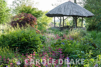 African inspired thatched hut surrounded by moisture loving plants including candelabra primulas, irises and rodgersias. West...