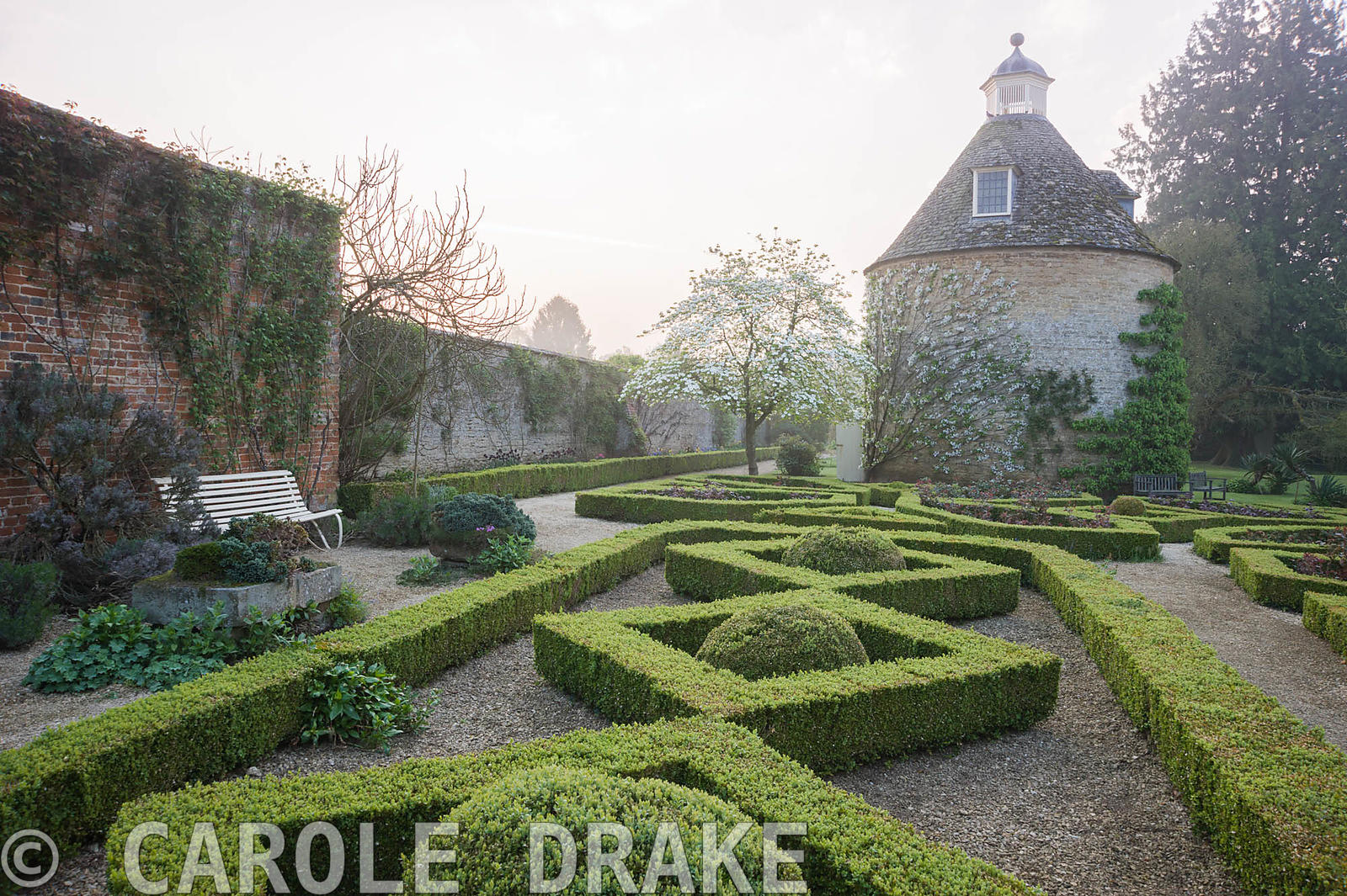 Pigeon House garden with pigeon house, 1685, and box parterre with Cornus nuttallii and new red leaves of hybrid tea roses. R...