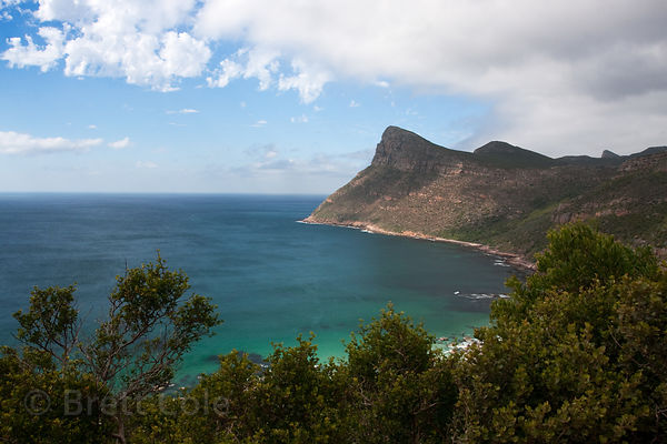 South African coastline near the entrance to the Cape of Good Hope section of Table Mtn. National Park