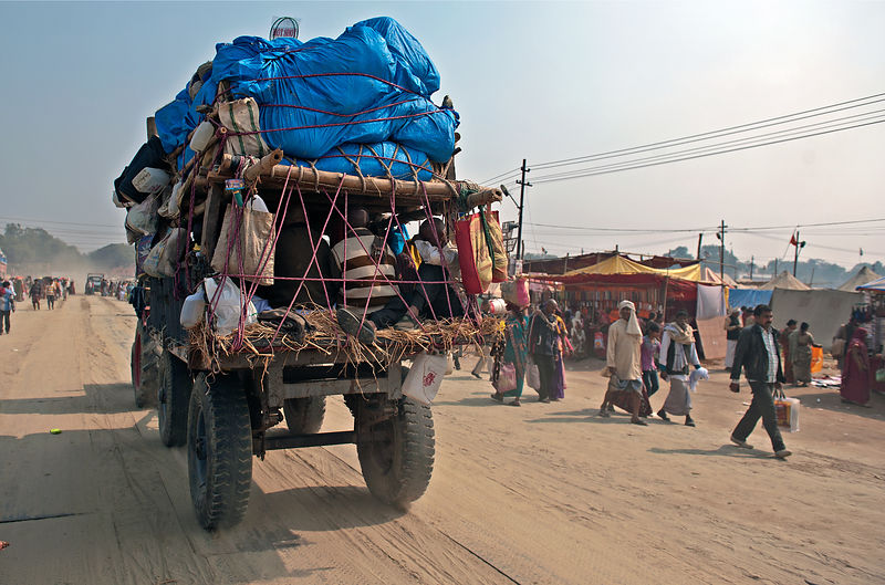 Pilgrims commute with their luggage during the Kumbh Mela.
