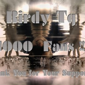 Over 1000 Fans on Facebook!