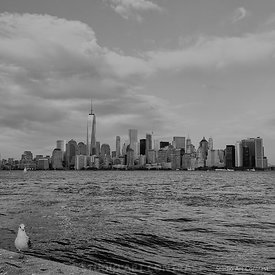 New_york_ellis_island_mouette_manhattan_hudson_river_BNWX