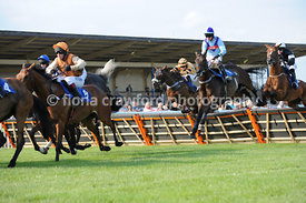 The Maiden Hurdle (Class 5) - Tuesday 25th June 2013
