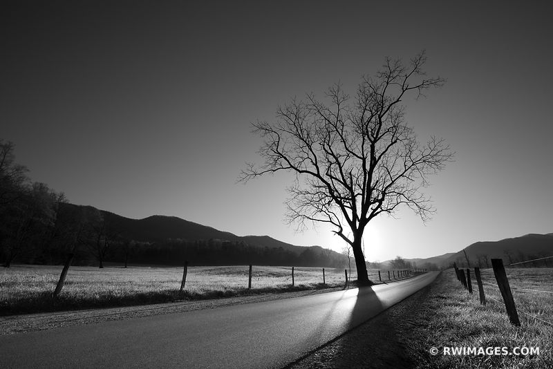 Great Smoky Mountains National Park North Carolina - Black and White Photos
