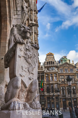 Lion Statue at the Town Hall in Brussels