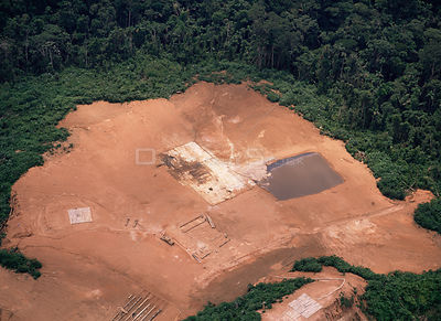 Aerial view of deforestation for crude oil exploration,  Amazonia, Ecuador