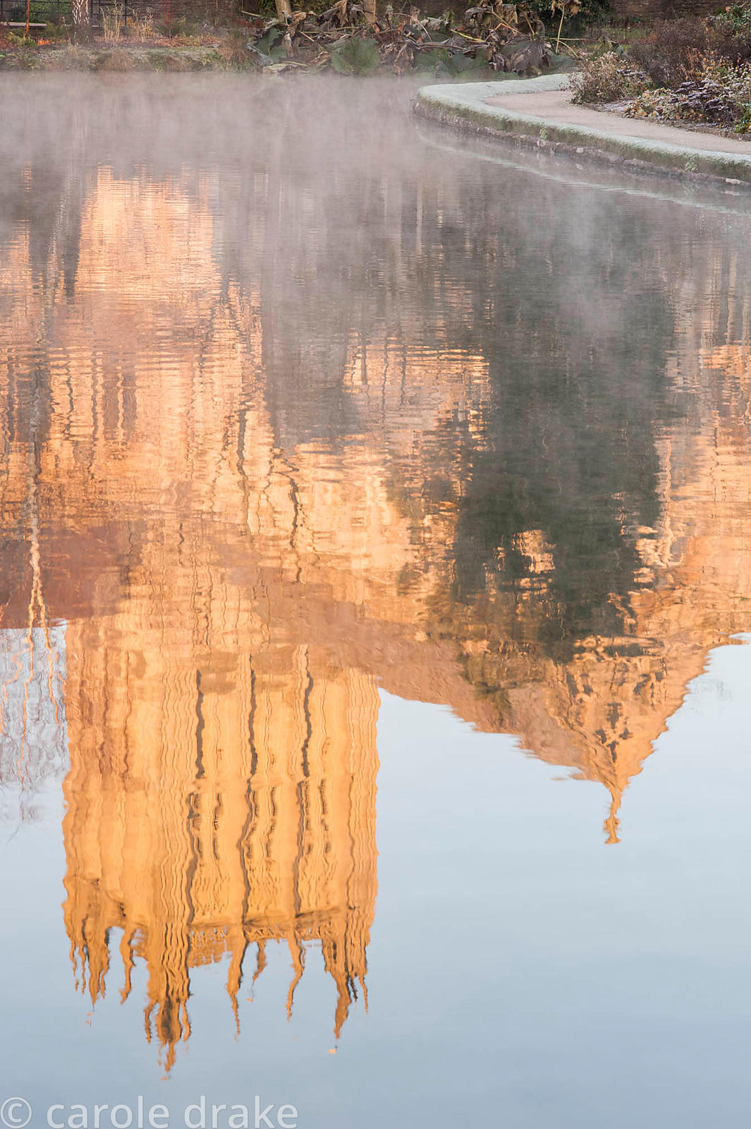 Reflection of Wells Cathedral in the Well Pool in the Bishop's Palace Garden on a November morning