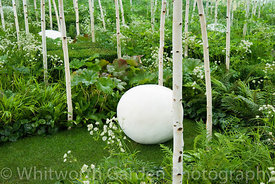 The Forest2 conceptual garden at the RHS Hampton Court Flower Show. Designer: Ivan Tucker. © Rob Whitworth