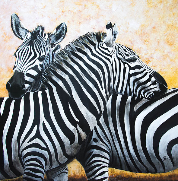"""Zebra friendship"""