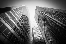 Black and White Chicago Downtown City Office Buildings