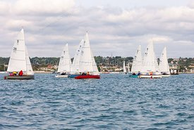 Dolphin fleet, Zhik Poole Week 2018, 20180828119