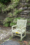 Lichen encrusted chair infront of rock face colonised by Mexican daisies, Erigeron karvinskianus. Bosvigo, Truro, Cornwall, UK