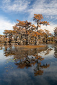 Caddo Fall Reflections