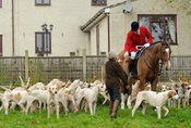 Andrew Osborne MFH and hounds - The Cottesmore Hunt meet at Oak House, Tilton On The Hill, Saturday 31st October 2015.