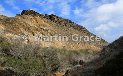 Volcanic landform at Punta Pitt, San Cristobal, Galapagos Islands