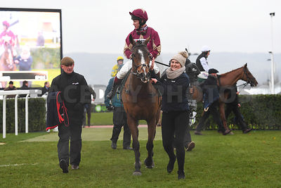 Ozzie_The_Oscar_winners_enclosure_15122018-1