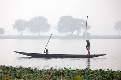 Fishermen beat the water with sticks to scare up the fish, East Kolkata Wetlands, India.
