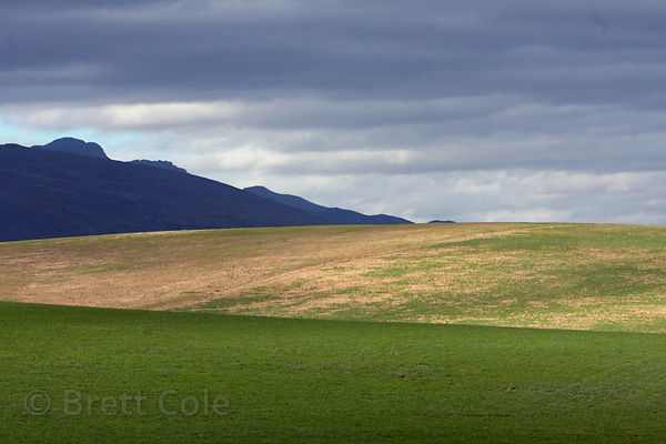 Farmland near Swellendam, South Africa