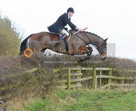 Tim Dobson-Seaton jumping a hedge with the The Belvoir Hounds at Ingarsby Hall 3/2