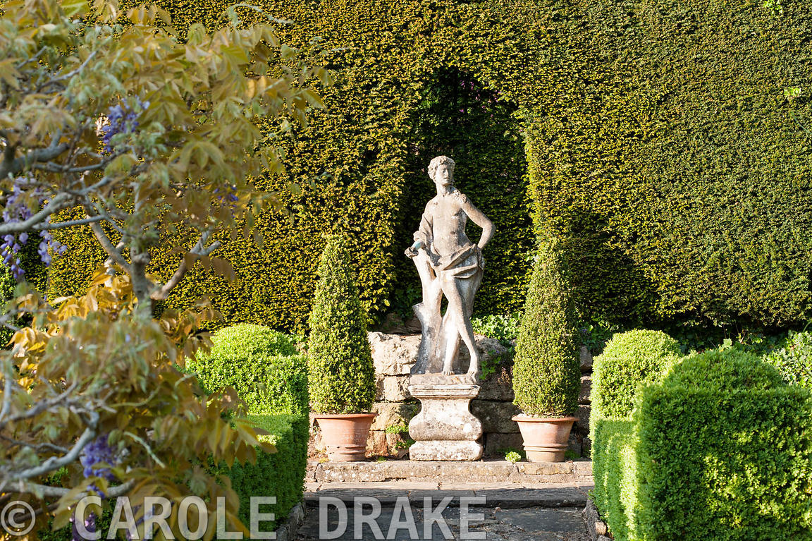 Italian marble statue of youth on the Great Terrace, set against a yew hedge and framed with box cones. Iford Manor, Bradford...