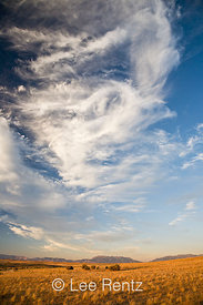 Dramatic clouds above the prairie, Antelope Island State Park in the Great Salt Lake, Utah, USA, August, 2008_UT_4383