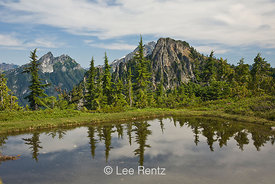 Nearby peaks in the Cascade Mountains viewed from a glacial tarn in Mt. Forgotten Meadows, Mt. Baker-Snoqualmie National Fore...