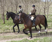 Royal Artillery Hunt, Beech's Barn,