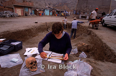 archaeologist examines a skeleton