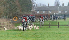 Hounds and huntsman leaving the meet