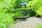 Fishpond in the Scholar's garden edged with irises and overhung by a tree peony, Ginkgo biloba in foreground and pavilion bey...
