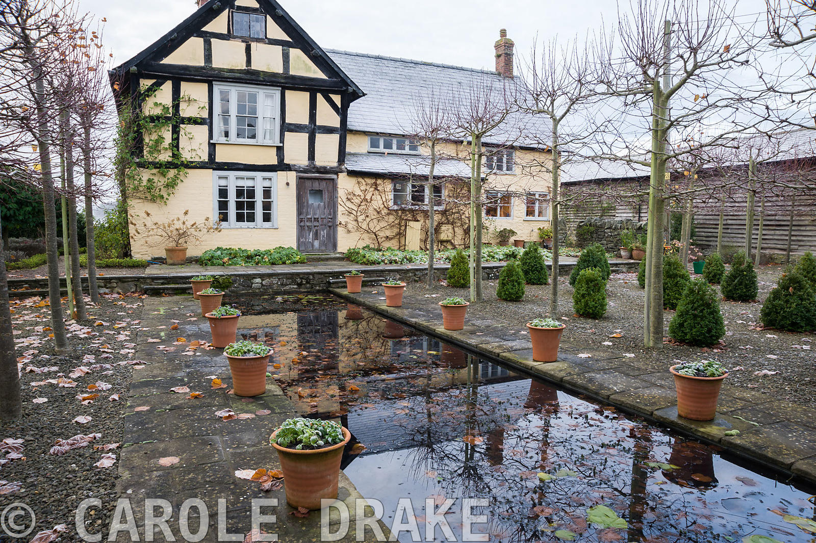 The Canal, framed by pleached limes and terracotta pots, with 16th century house behind.