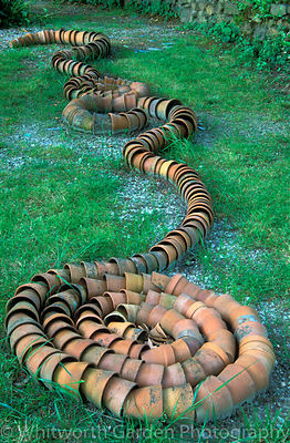 Flowerpots arranged as a snake on the ground at Pinsla Garden and Nursery, Cornwall. © Rob Whitworth