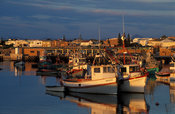Harbour, Lambert's Bay, Western Cape, South Africa