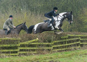 HB jumping a hedge at Town Park Farm