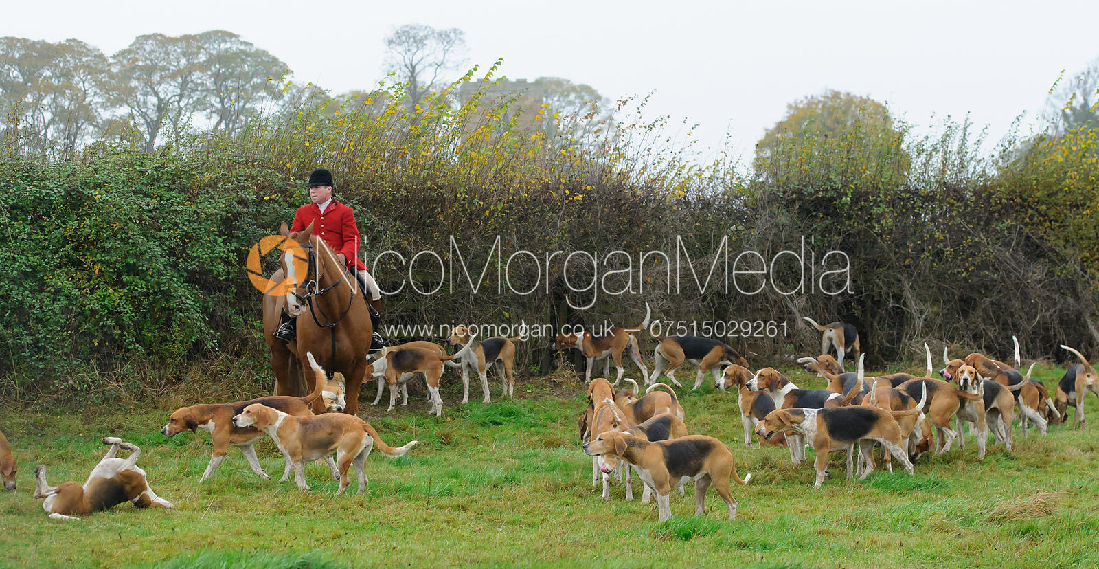 The Belvoir Hunt opening meet, Long Clawson 7/11