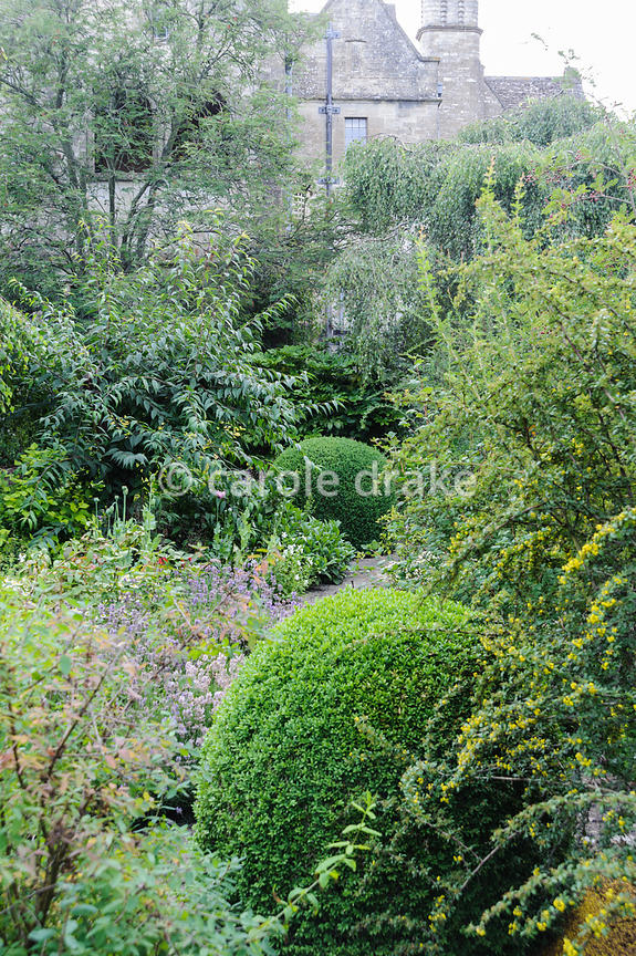 The Leisure Garden planted with contrasting shapes and textures of shrubs including clipped box. Rodmarton Manor, Rodmarton, ...