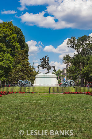 Andrew Jackson Statue at the White House