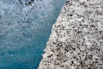 Macro view of ice on the surface of the Athabasca Glacier. Small pieces of pulverized rock from the glacial movement are enca...